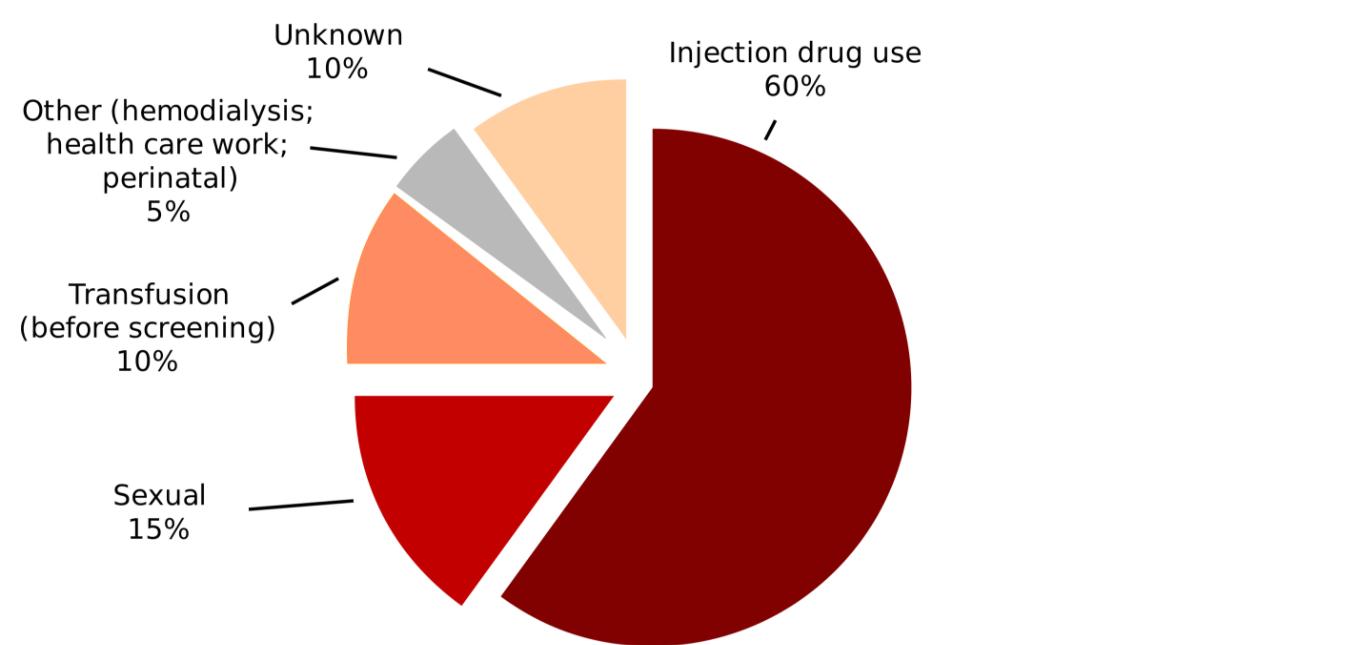 Causes of Hepatitis C: What Causes Hepatitis C?