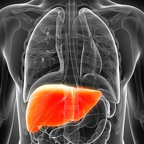 What is Hepatitis C?