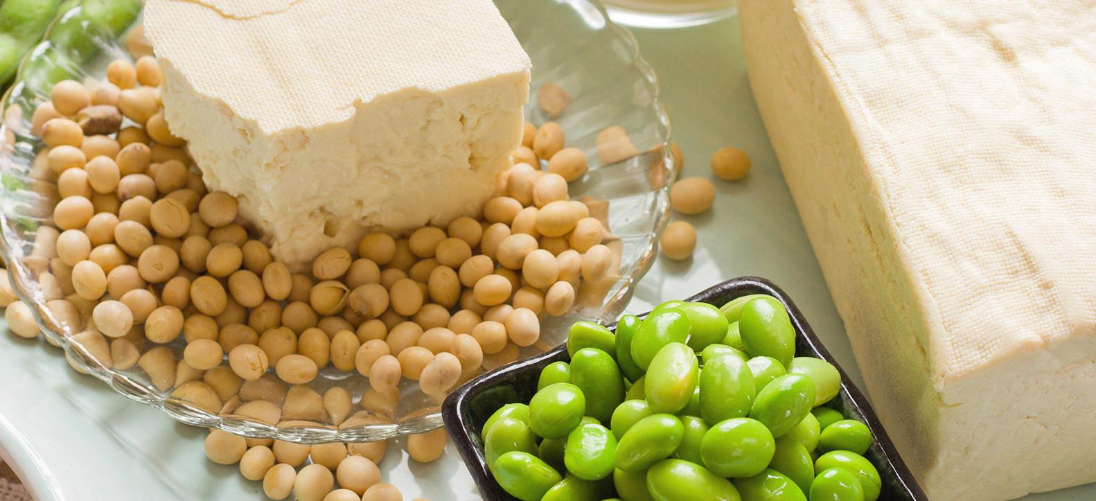 10 Foods High in Estrogen – Estrogen Rich foods