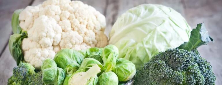 Foods High in Vitamin K
