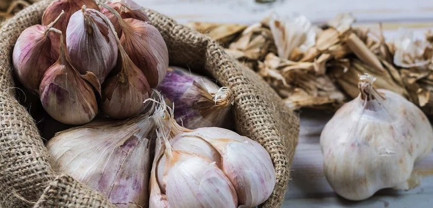 11 Health Benefits of Garlic