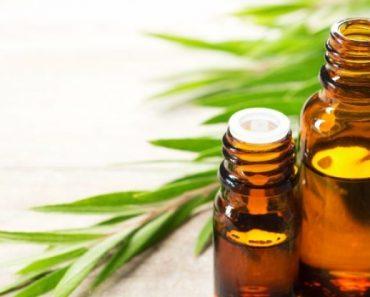 Tea Tree Oil for Sunburn