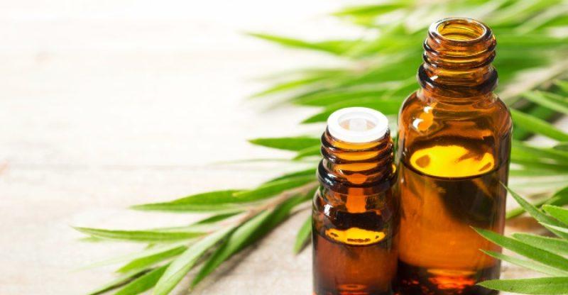 Tea Tree Oil for Sunburn: Is Tea Tree Oil Good for Sunburn Relief?