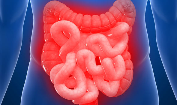 Irritable Bowel Syndrome (IBS) Center