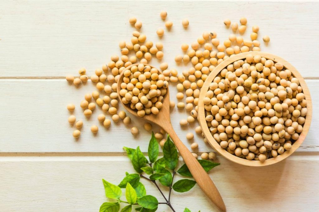 Soy holds Anti Inflammatory properties