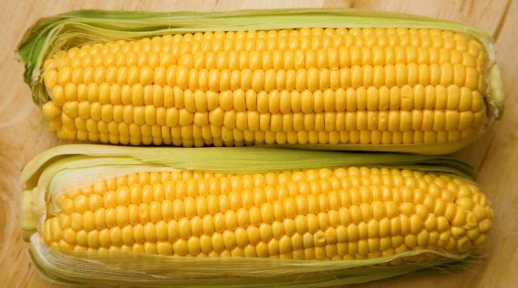 Corns might cause bloating